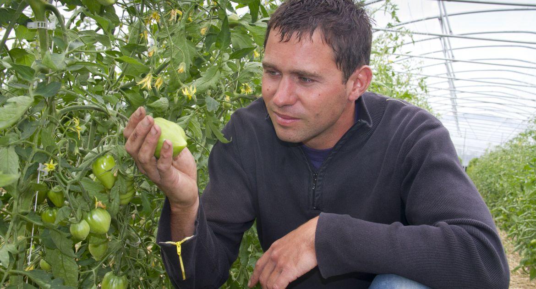 Frédéric Grosset