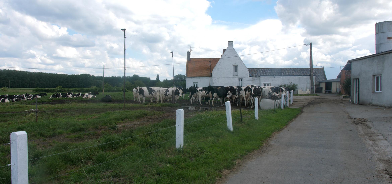 Remi Janssen, Nord